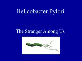 Helicobacter Pylori The Stranger Among Us