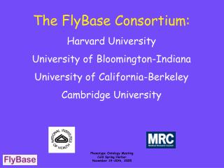 The FlyBase Consortium: Harvard University University of Bloomington-Indiana