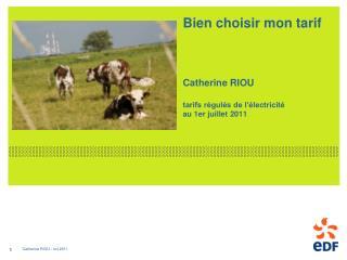 Bien choisir mon tarif Catherine RIOU tarifs régulés de l'électricité  au 1er juillet 2011