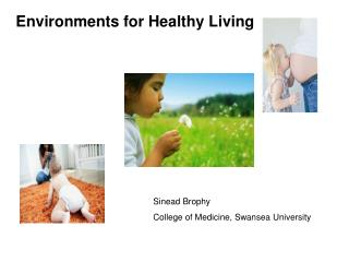 Environments for Healthy Living