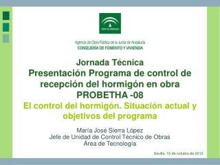 María José Sierra López  Jefe de Unidad de Control Técnico de Obras Área de Tecnología