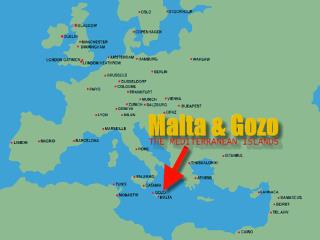 The Maltese Language