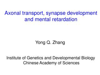 Axonal transport, synapse development and mental retardation