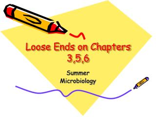 Loose Ends on Chapters  3,5,6