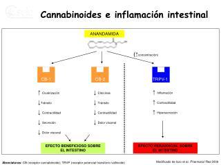 Cannabinoides e inflamación intestinal