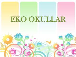 EKO OKULLAR