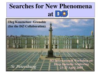 Searches for New Phenomena at