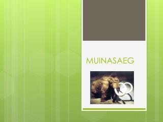 MUINASAEG