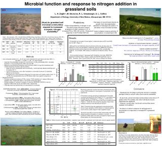Microbial function and response to nitrogen addition in grassland soils