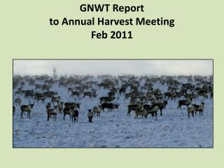 GNWT Report  to Annual Harvest Meeting Feb 2011