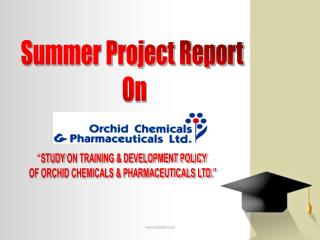 Summer Project Report  On