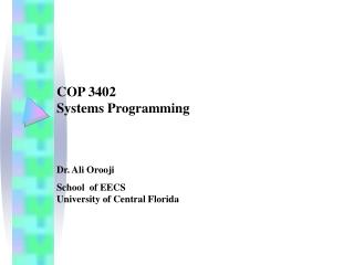 COP 3402  Systems Programming