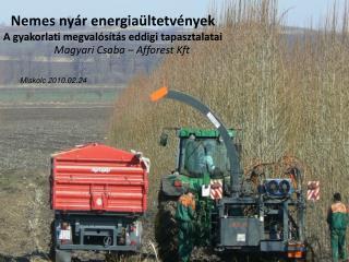 Nemes nyár energiaültetvények A gyakorlati megvalósítás eddigi tapasztalatai