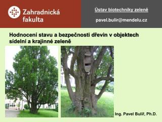 Ústav biotechniky zeleně pavel.bulir@mendelu.cz