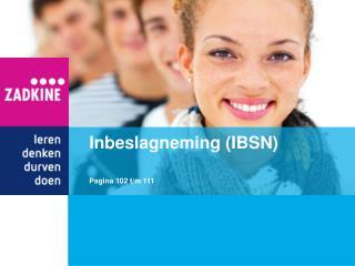 Inbeslagneming (IBSN)