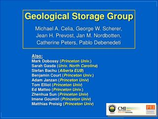 Geological Storage Group