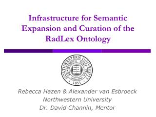 Infrastructure for Semantic Expansion and Curation of the RadLex Ontology