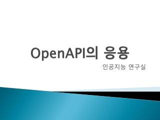 OpenAPI 의 응용