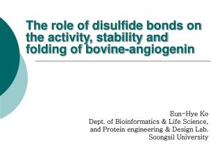 The role of disulfide bonds on the activity, stability and  folding  of bovine-angiogenin