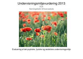 Undervisningsmiljøvurdering 2013 EUX Herningsholm Erhvervsskole