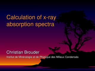 Calculation of x-ray absorption spectra