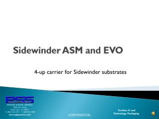 Sidewinder ASM and EVO