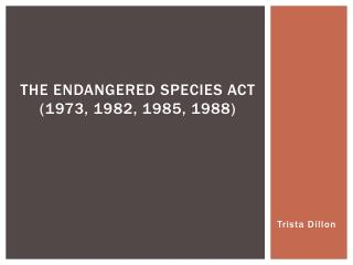 The Endangered Species Act (1973, 1982, 1985, 1988)