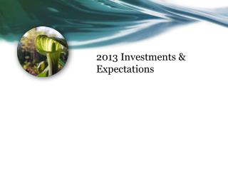 2013 Investments & Expectations