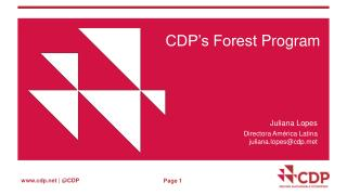 CDP's Forest  Program