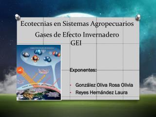 Gases de Efecto  I nvernadero  GEI
