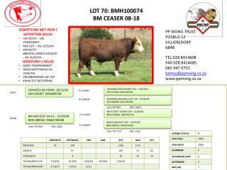 LOT 70: BMH100074 BM  CEASER 08-18