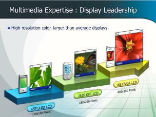 Multimedia Expertise : Display Leadership