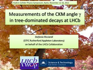 Measurements of the CKM  angle  g   in  tree-dominated  decays at LHCb