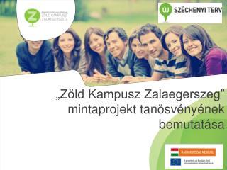 """""""Zöld Kampusz Zalaegerszeg""""  mintaprojekt tanösvényének bemutatása"""