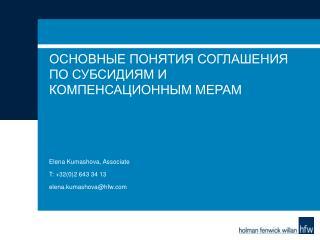 Основные понятия Соглашения по субсидиям и компенсационным мерам