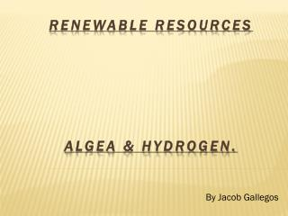 Renewable Resources  Algea  & hydrogen.