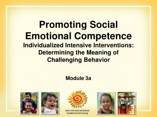 Promoting Social  Emotional Competence Individualized Intensive Interventions: Determining the Meaning of  Challenging B