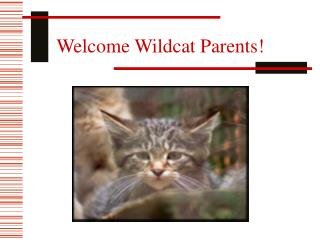 Welcome Wildcat Parents!