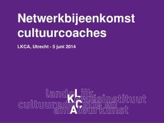 Netwerkbijeenkomst   c ultuurcoaches