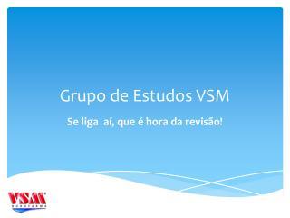 Grupo de Estudos VSM