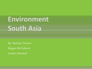 Environment South Asia