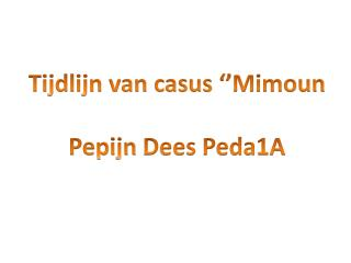 Tijdlijn van casus '' Mimoun Pepijn  Dees Peda1A