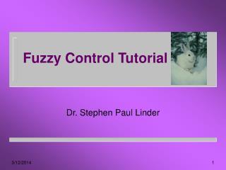 Fuzzy Control Tutorial
