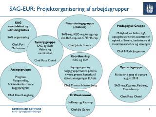 SAG-EUR: Projektorganisering af arbejdsgrupper