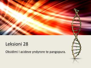 Leksioni  28