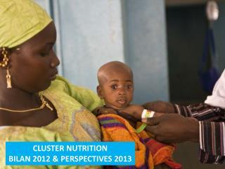 CLUSTER NUTRITION BILAN 2012 & PERSPECTIVES 2013