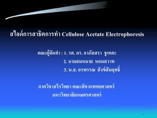 สไลด์การสาธิตการทำ  Cellulose Acetate Electrophoresis คณะผู้จัดทำ  :  1. รศ. ดร. อาภัสสรา  ชูเทศะ