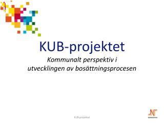 KUB-projektet Kommunalt perspektiv i  utvecklingen av  bosättningsprocesen