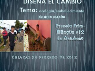 DISEÑA EL CAMBIO Tema:  ecología/embellecimiento  de área escolar