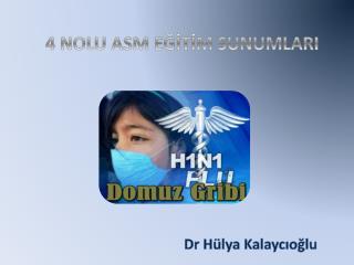 Dr Hülya  Kalaycıoğlu